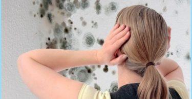 Jak pozbyć się pleśni w łazience: środki do zwalczania