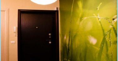 Zdjęcie ściany w korytarzu i przedpokoju