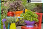 Top 10 roślin na leżakach - które siedzą po słonecznej stronie?