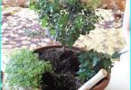 Szermierka falistej (blachy trapezowej) z rękami: o ogrodzeniu blach