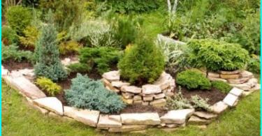 Jak wybrać opryskiwacz ogrodowy: przegląd opcji + wskazówki dotyczące wyboru