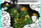 Hodowla ryb w sztucznych stawach - cechy i niuanse